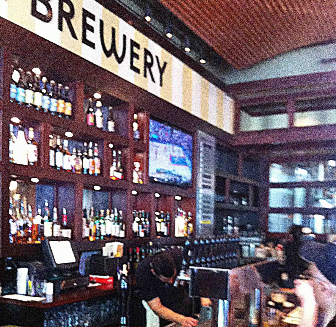 131. Iron HIll Brew Pub, Chestnut Hill PA 2012