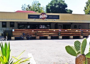 Warm service, cool local beer at the Moxy Beer Garden