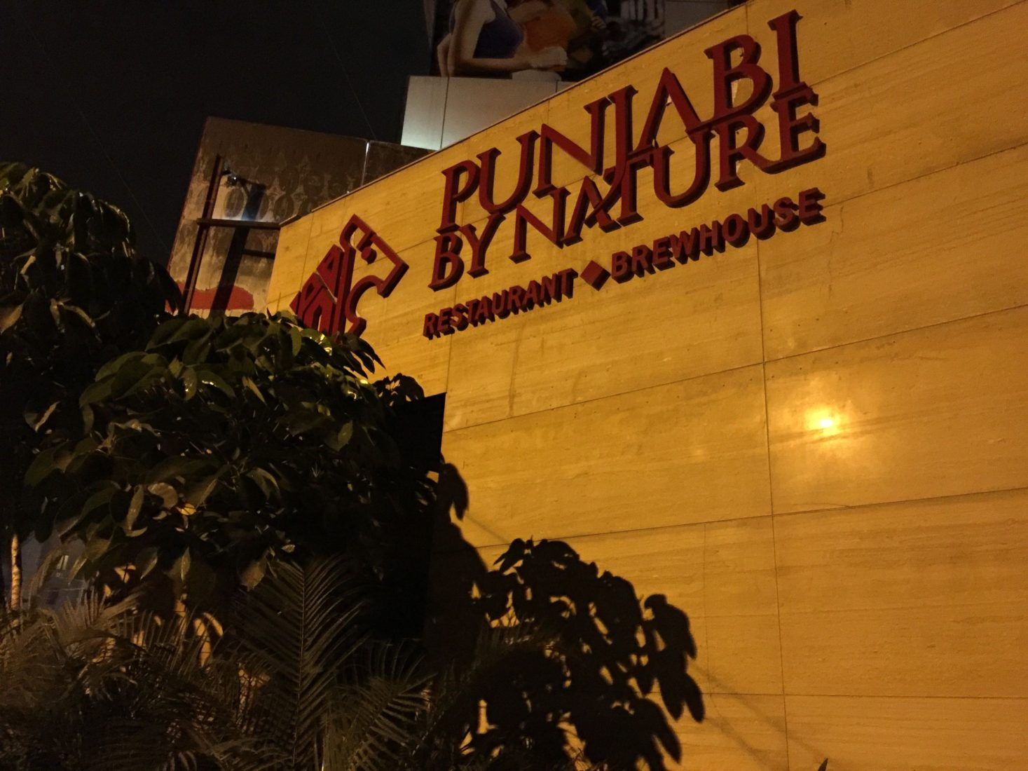 258. Punjabi by Nature, Bangalore India, 2015