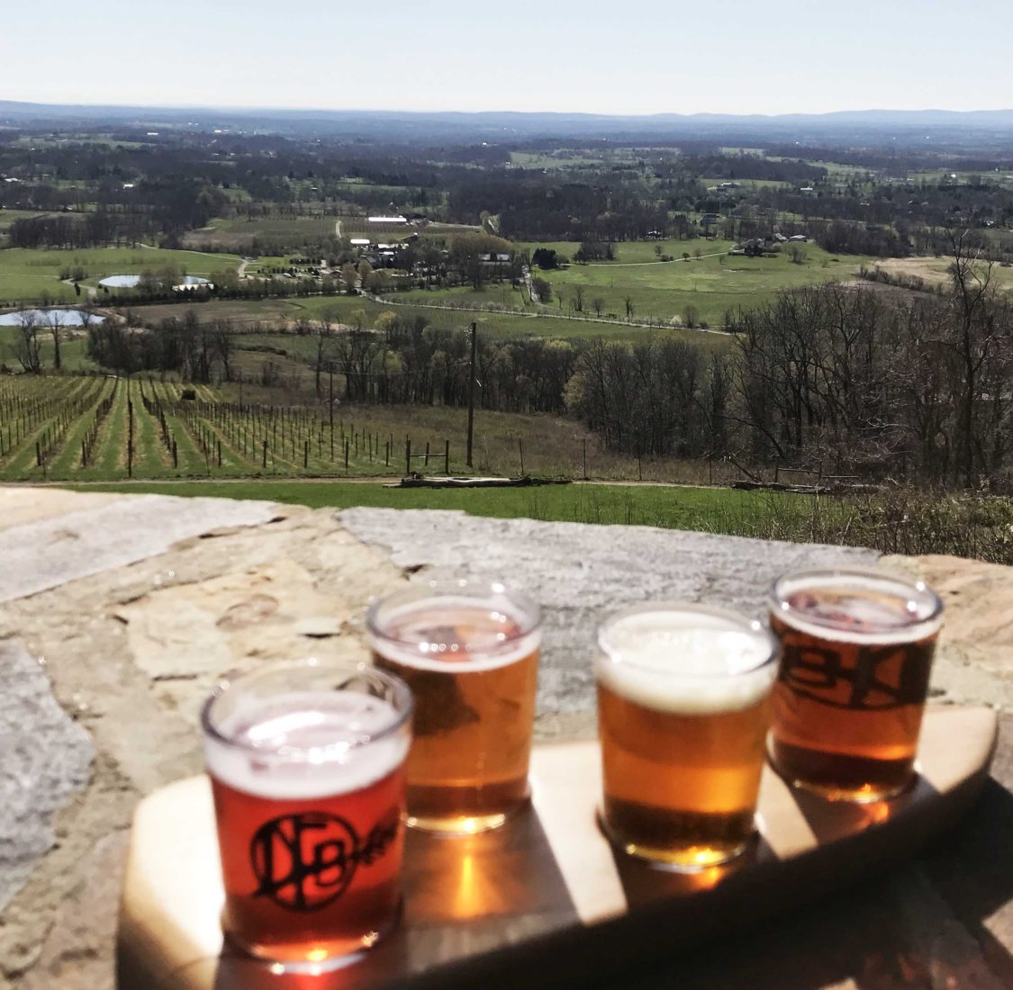 324. Dirt Farm Brewing Co, Bluemont VA, 2017
