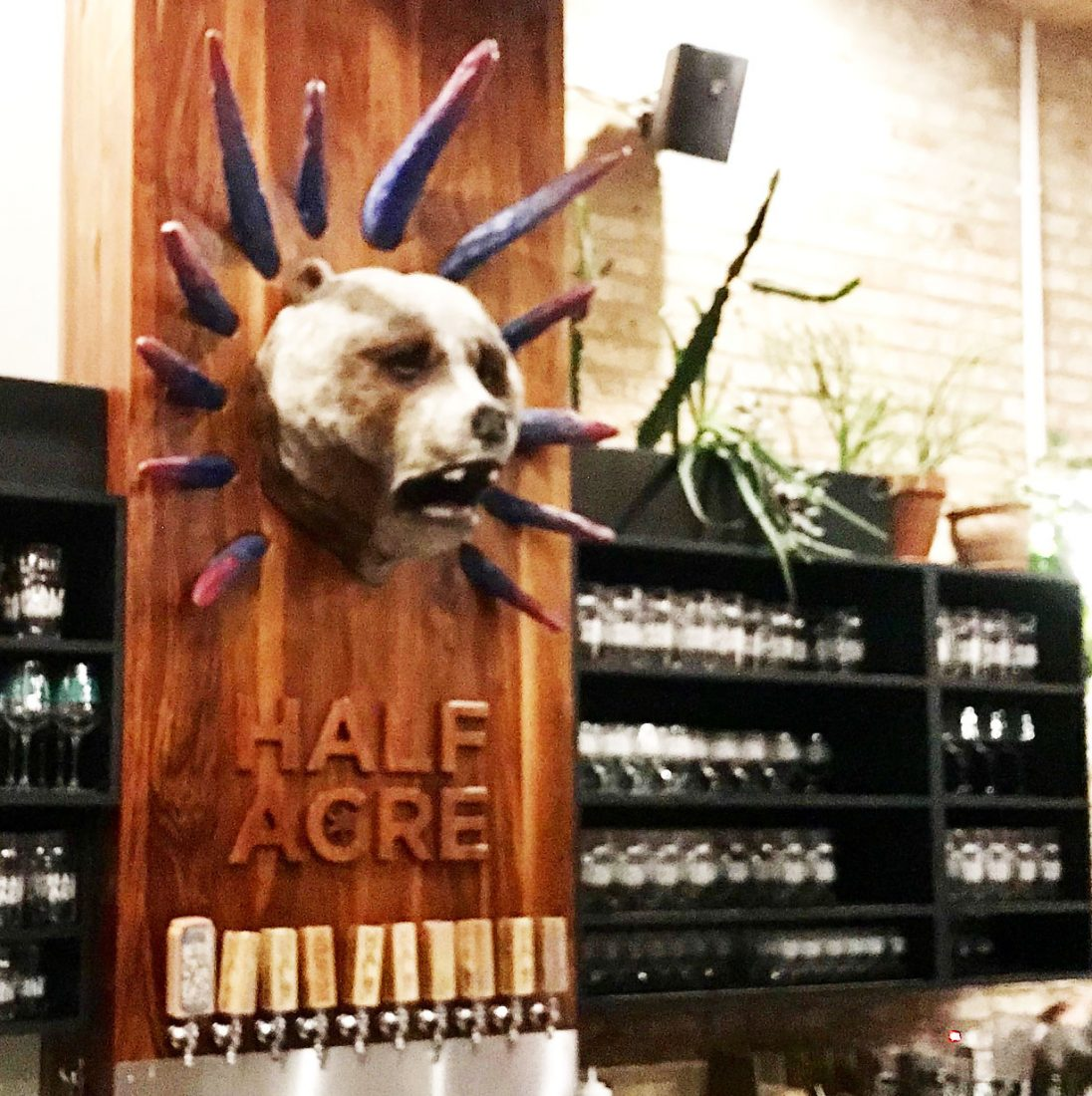 448. Half Acre Brewing, Chicago IL, 2019