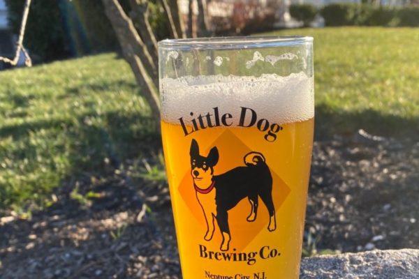 LIttle Dog Gl